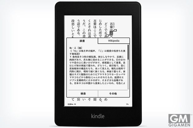 gigamen_Kindle_Paperwhite