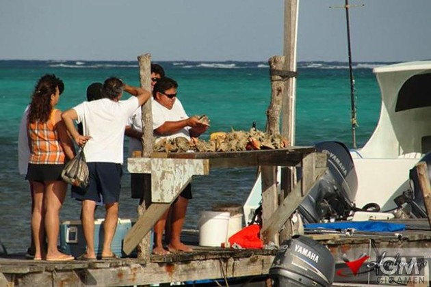 gigamen_Ambergris_Caye_Belize