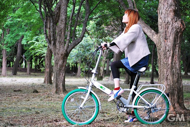 gigamen_Raychell_Folding_Bike