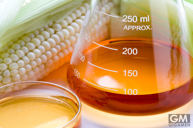 gigamen_7_Ingredients_Always_Avoid05
