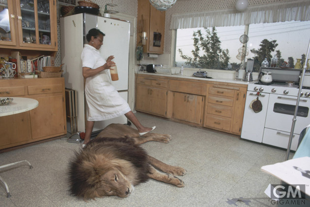gigamen_Melanie_Griffith_Living_With_A_Lion02