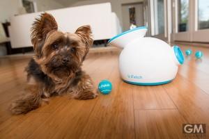 愛犬家のための自動キャッチボールシステム iFetch