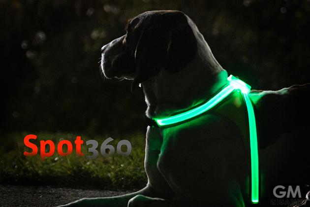 gigamen_Spot360