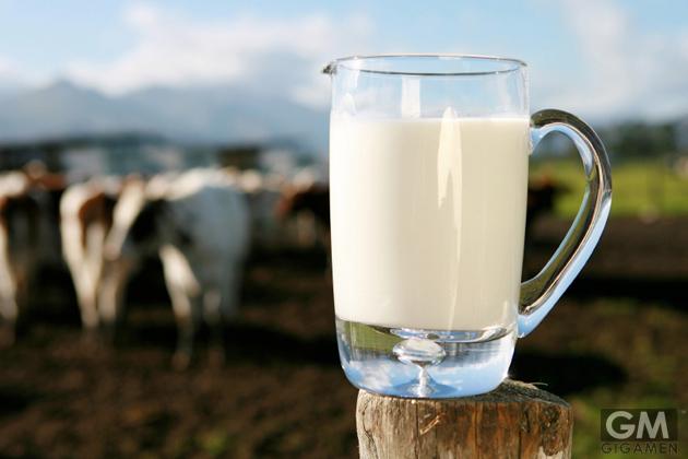 gigamen_California_a2_Milk02