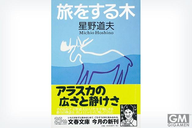 gigamen_Michio_Hoshino02