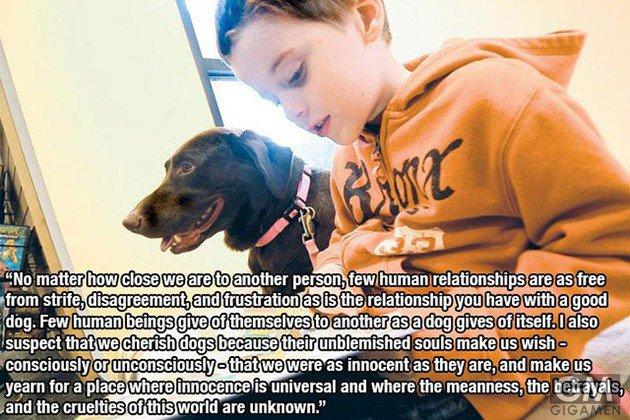 gigamen_for_dog_lovers03