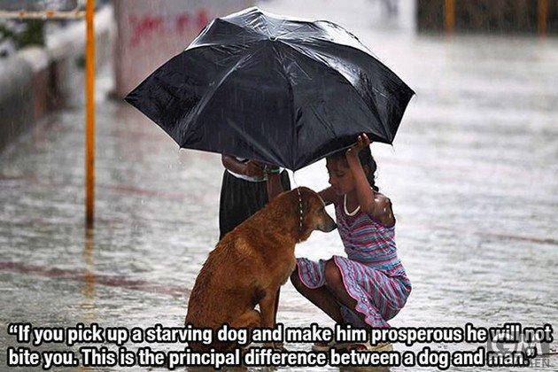 gigamen_for_dog_lovers05
