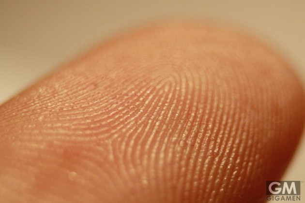 gigamen_Yankee_Stadium_Fingerprints01