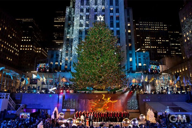 10-best-christmas-trees-2