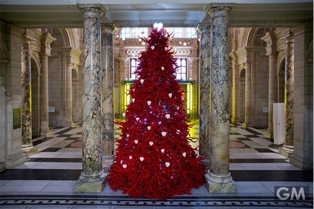 10-best-christmas-trees-4