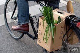 bicycle-grocery-carrier