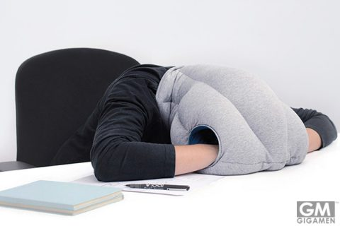 00_ostrichpillow-original